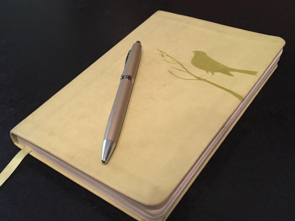 Ashley's Journal